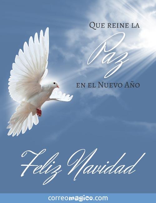 Que reine la Paz en el nuevo año.  Feliz Navidad