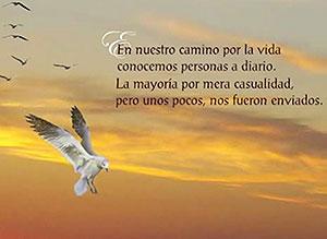 Imagen de Amistad para compartir gratis. Enviado del Cielo