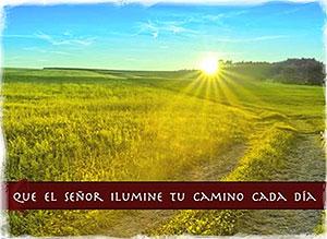 Imagen de Año Nuevo para compartir gratis. Que el Señor ilumine tu camino