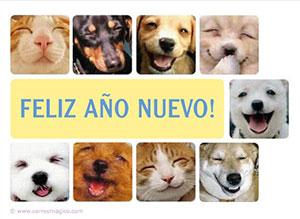 Imagen de Año Nuevo para compartir gratis. Una sonrisa cada día