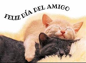 Imagen de Día de la Amigo para compartir gratis. Para lo que necesites…