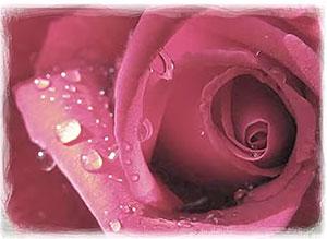 Imagen de Día de las Madres para compartir gratis. Dios creó a las Madres