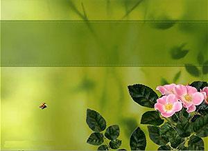 Imagen de Día de las Madres para compartir gratis. El Amor florece hoy