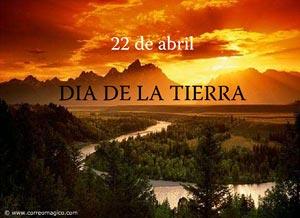 Imagen de Día de la Tierra para compartir gratis. El último árbol