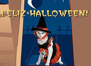 Imagen de Halloween para compartir gratis. Espantosas criaturas...