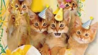 Imagen de Cumpleaños para compartir gratis. Miau feliz