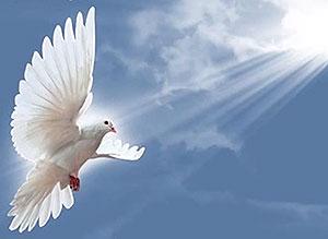 Imagen de Navidad para compartir gratis. Que comience una era de Paz