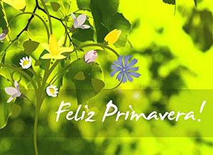 Imagen de Día de la Primavera para compartir gratis. Los más bellos colores de la vida