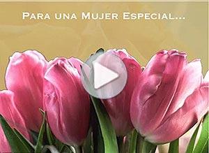 Imagen de Dia de la Mujer para compartir gratis. Para una mujer especial