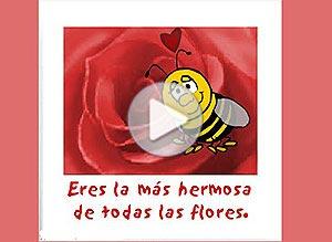 Imagen de Amor para compartir gratis. Eres una flor