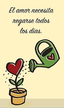 El amor necesita regarse todos los dias.