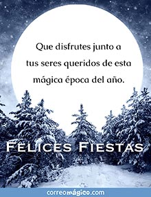 Que disfrutes junto a tus seres queridos de esta mágica época del año.  FELICES FIESTAS