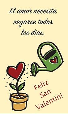 El amor necesita regarse todos los días. Feliz San Valentín