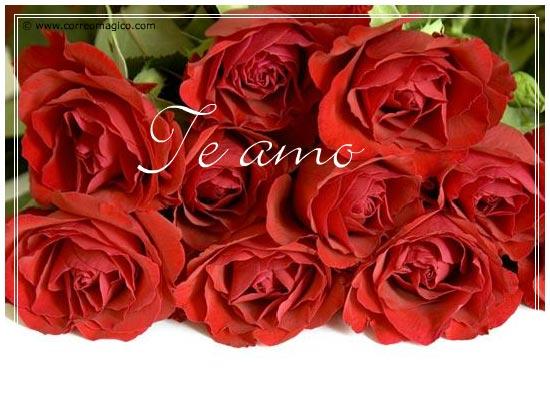 : Rosas