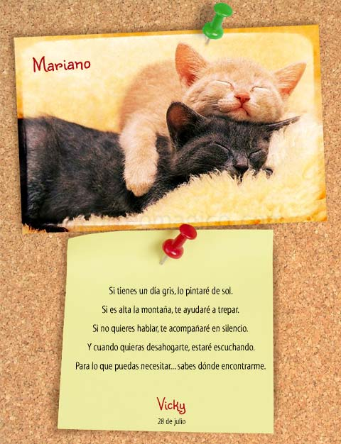 . amistad_gatos