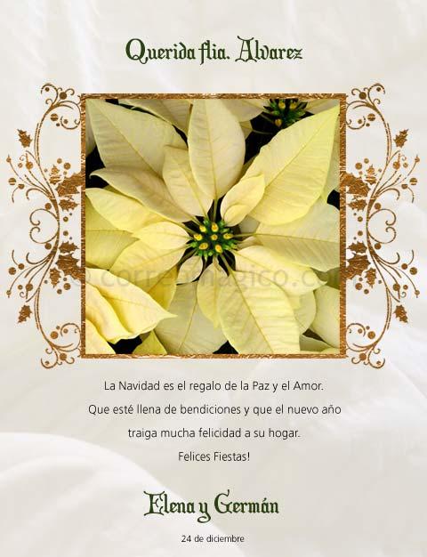 . navidad_poinsettia