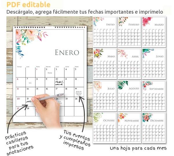 Calendario Junio 2019 Para Imprimir Pdf.Calendario 2019 Para Descargar Editar E Imprimir